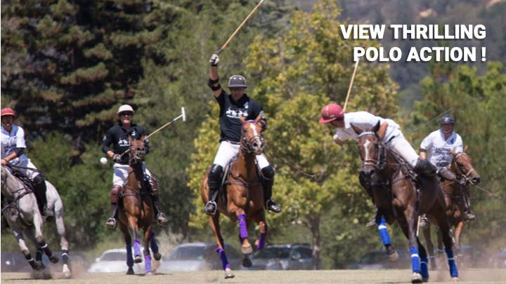 View Thrilling Polo Action
