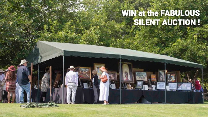 Win at the Fabulous Silent Auction
