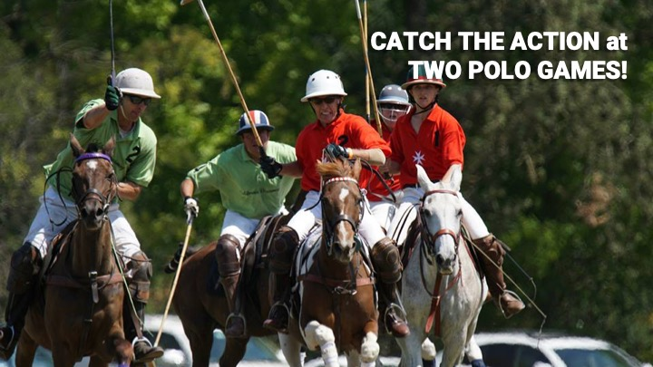 Catch The Action at Two Polo Games